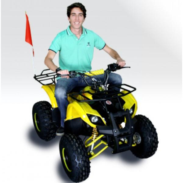 Quadriciclo 125cc BZ Little Bull Barzi Motors Pneus Aro 8' Quadriciclos